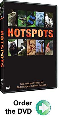 Hotspots DVD